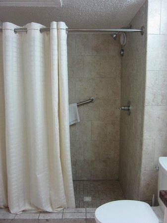 Flamingo Beach Resort: shower