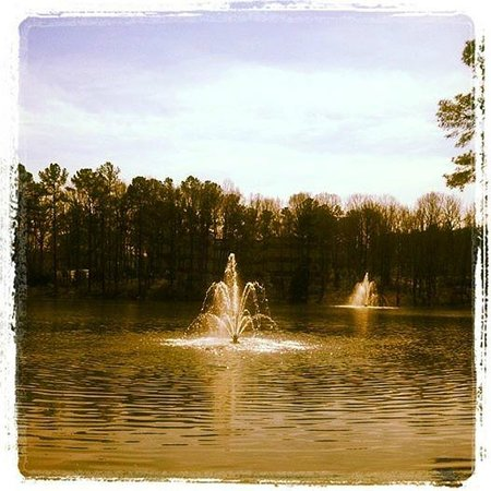The Umstead Hotel and Spa: Lake ...and there's a perfectly maintained half-mile trail surrounding it