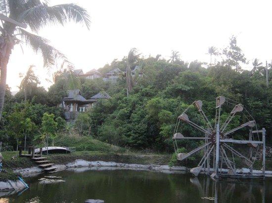 Santhiya Koh Phangan Resort & Spa : gardens