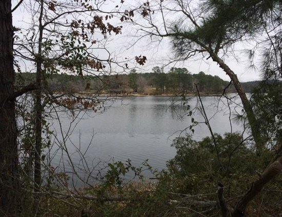 Daingerfield State Park: A view from the hike around the lake.