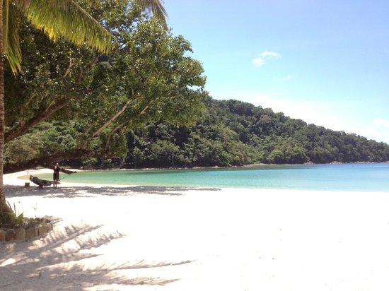 Secret Paradise Resort & Turtle Sanctuary : vue