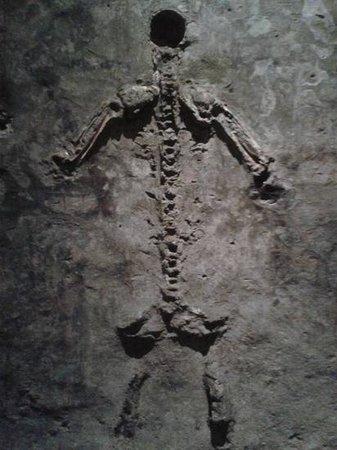 Catacombe Di San Gaudioso Napoli: catacombe di s. Gaudioso