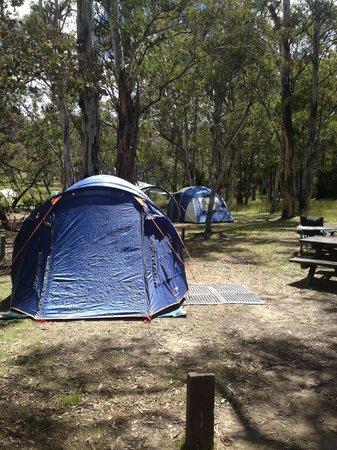 Kosciuszko Tourist Park: Tent site