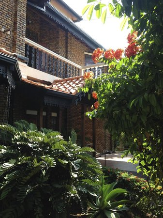 Delma Bungalow: Trees blossoming in front