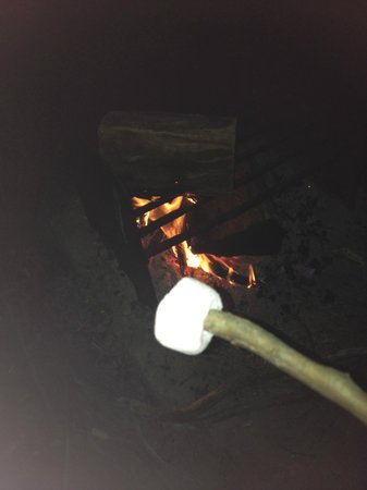 Kosciuszko Tourist Park: Toasted marshmallows