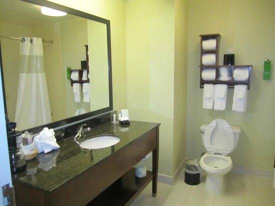 Hampton Inn Richmond Southwest - Hull Street : Bathroom