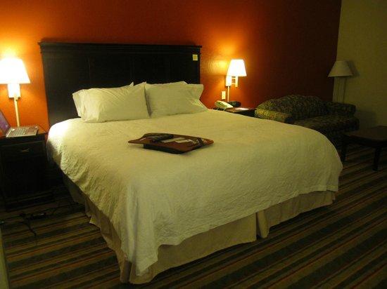 Hampton Inn Richmond Southwest - Hull Street : King size bed
