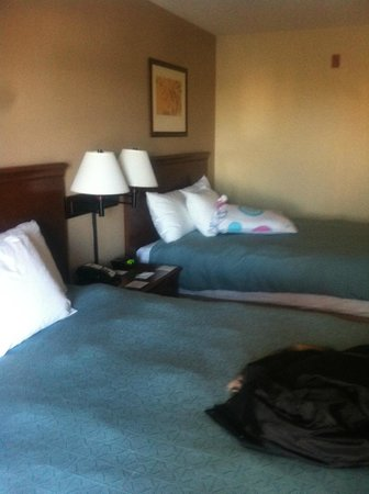 Country Inn & Suites By Carlson, Toledo: 2 QUEEN BEDS STANDARD ROOM