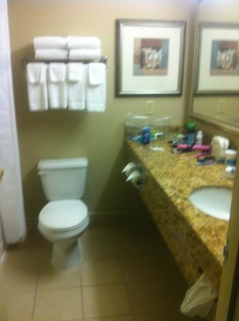 Country Inn & Suites By Carlson, Toledo : CLEAN BRIGHT BATHROOM, COULD BE A LITTLE LARGER