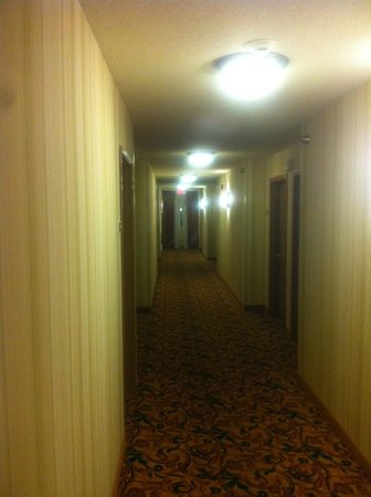 Country Inn & Suites By Carlson, Toledo : HALLWAY ON 2ND FLOOR