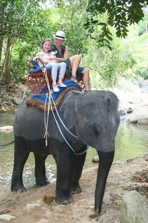 Lotus Samui : Elephant riding