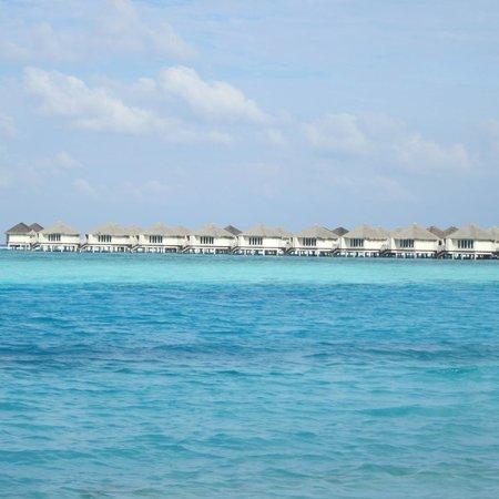 Cinnamon Dhonveli Maldives : The beach