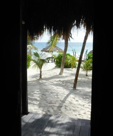 Playa Mambo: View from the Green Cabana
