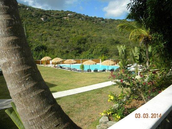 Flamboyan on the Bay Resort & Villas: Smaller of two pools at Magens Point Resort