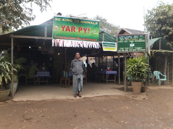 Yar Pyi Vegetarian Restaurant : Proud owner.  The food is is really good!