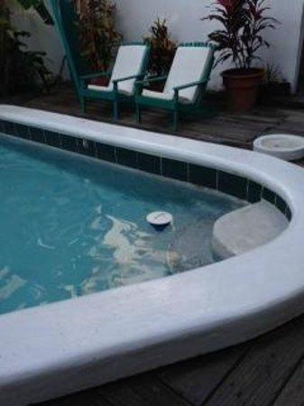 Seven Seas Resort: Dirty Pool