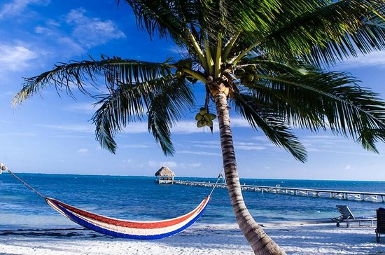 Sunset Beach Resort: Hammock outside condo