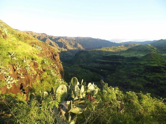 Hike Kauai With Me : Waimea Canyon from Eric's unique trail