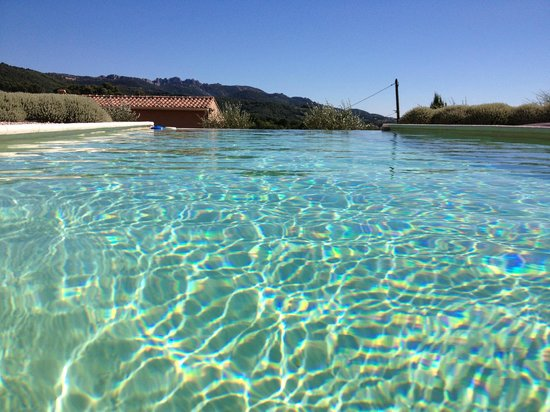 Patios des Vignes: The view from the pool in July when my husband went there.