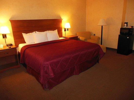 Comfort Inn Trolley Square: Room