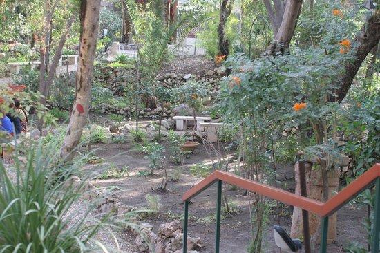 Calvaire de Gordon : The lovely garden