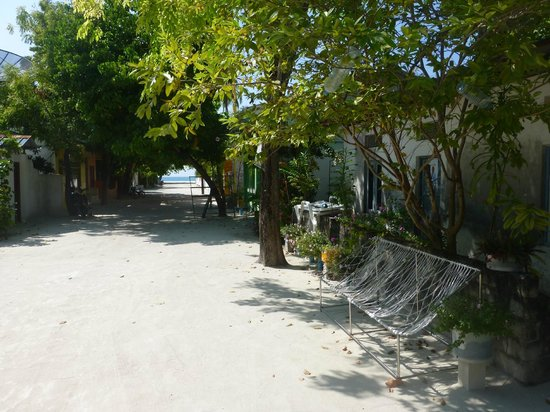 TME Retreats Dhigurah: The village at Dhigurah