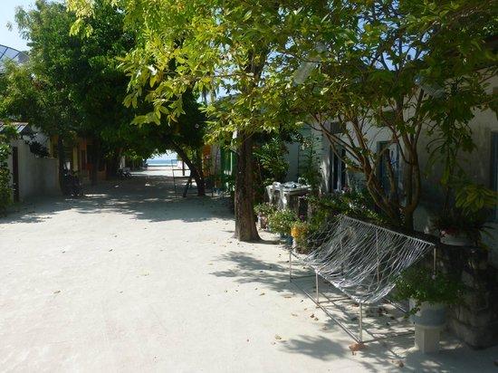 TME Retreats Dhigurah : The village at Dhigurah