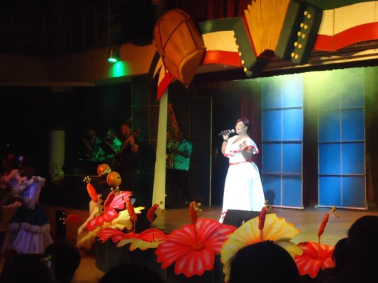 Iberostar Punta Cana: Show noturno