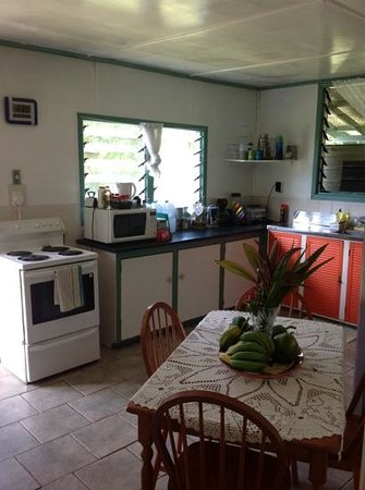 Amuri Guesthouse: Kitchen