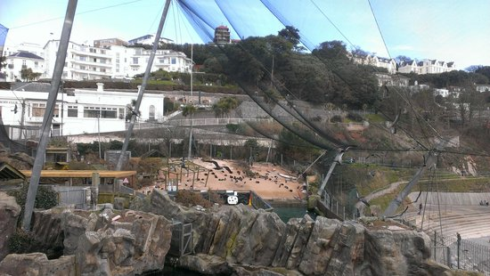 Living Coasts: view near top