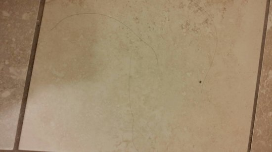 Hampton Inn Birmingham I-65/Lakeshore Drive : Hair on bathroom floor.