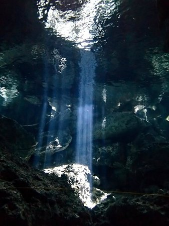 Divers UnderGround : Light shining through at Dos Ojos