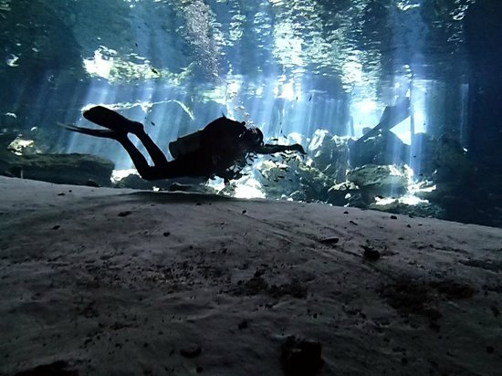 Divers UnderGround : Camilo feeding the fish at the end of your Dos Ojos Dive