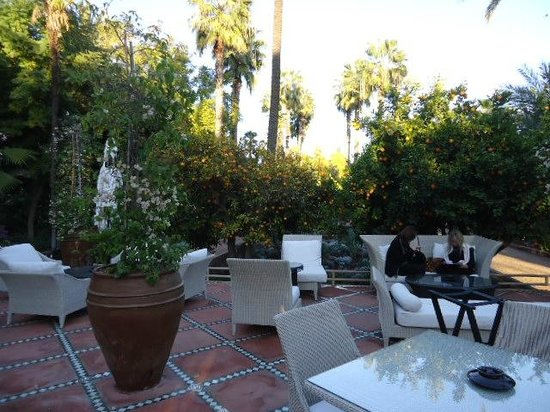 La Mamounia : Great place to enjoy afternoon tea.