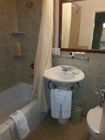 Bolger Center: Bathroom in  deluxe double