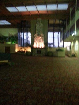 Holiday Inn Mount Vernon: activity room