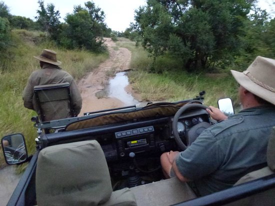 Tangala Safari Camp: game drive