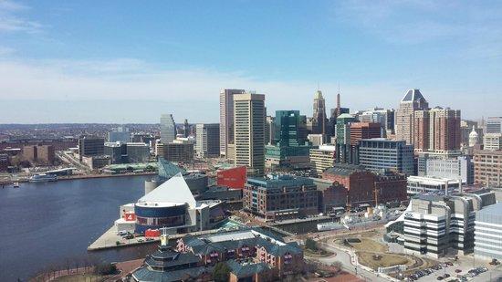 Baltimore Marriott Waterfront: Habor View