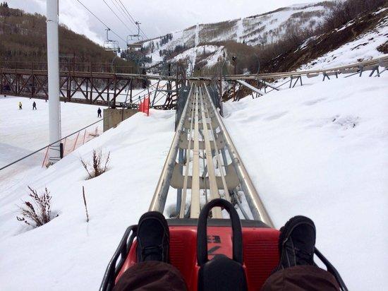 Alpine Coaster : Heading up