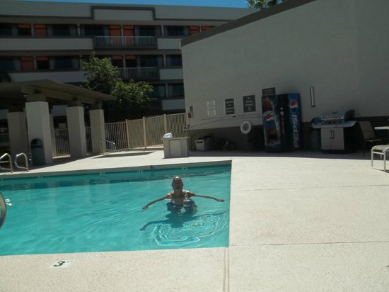 Clarion Hotel Phoenix-Chandler: Pool View from Lounge Chair