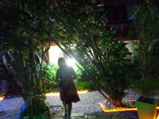 Hotel Solar do Imperador: Jardim interno.