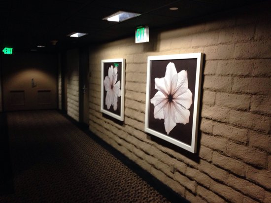 The Garland : The hallway to our room
