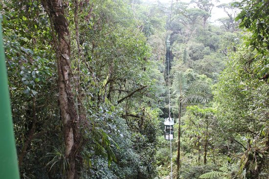 Parque Nacional Braulio Carrillo: Aerial Tram sight at park
