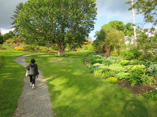 Holehird Gardens: Holehird Garden