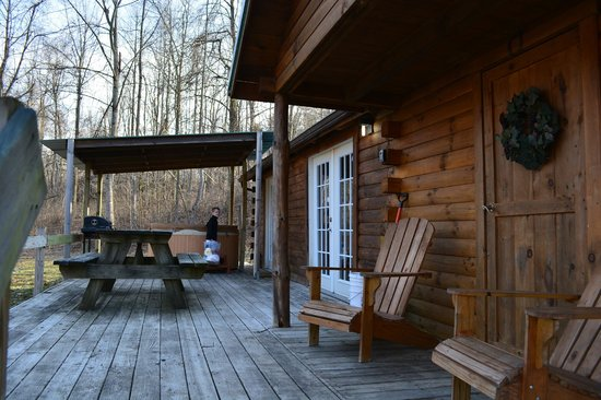 Comfort in the Woods Cabins : Entrance