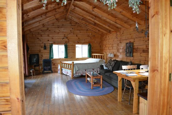 Comfort in the Woods Cabins : Living room