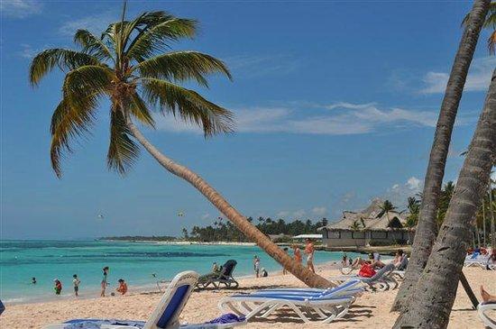 Club Med Punta Cana : Vista da praia