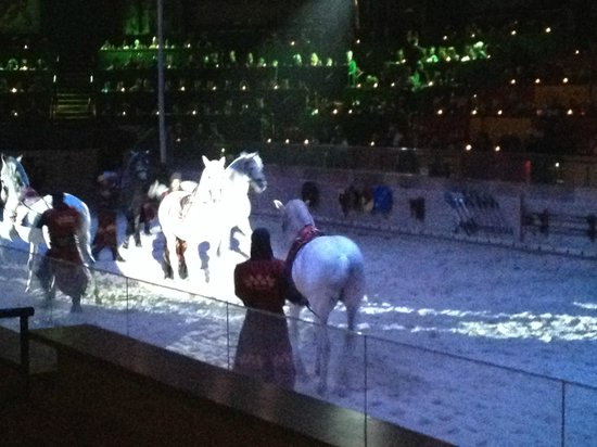 Medieval Times : Dancing horses