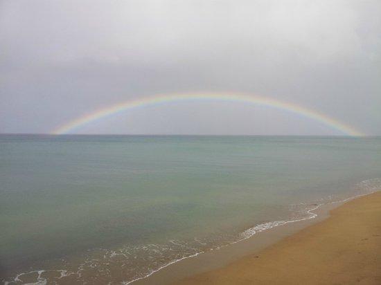 Tres Sirenas Beach Inn: Rainbow on our Wedding Day!
