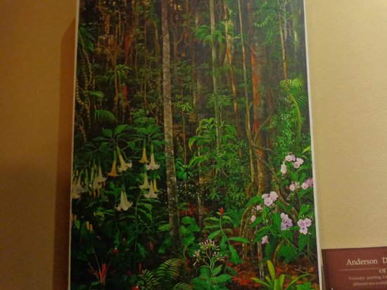 Karma Cafe: Picture of the Rainforest